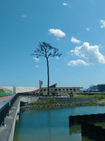 'Radioactive Aesthetics': Distance and Avisuality in Post-Fukushima Literature